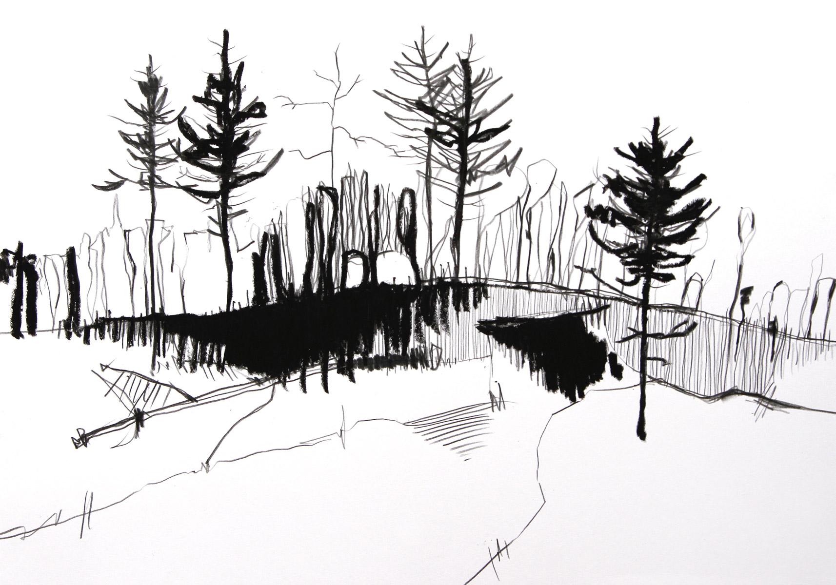 Finsterwald, 2020, 42cm x 29,7 cm