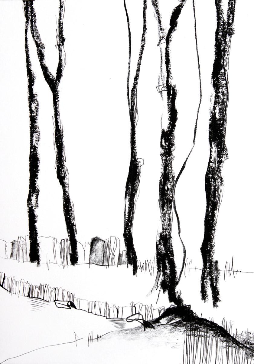 Finsterwald, 2020, 29,7 cm x 42cm
